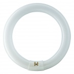 Fluorescent Lamp Philips MASTER TL-E Circular Super 80